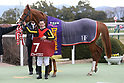 Horse Racing: Nikkei Shinshun Hai at Kyoto Racecourse