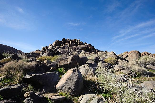 Typical Chukar habitat in the Mojave Desert