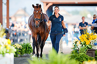 GBR-Charlotte Dujardin presents Mount St John Freestyle during the Horse Inspection for Dressage. 2018 FEI World Equestrian Games Tryon. Tuesday 11 September. Copyright Photo: Libby Law Photography
