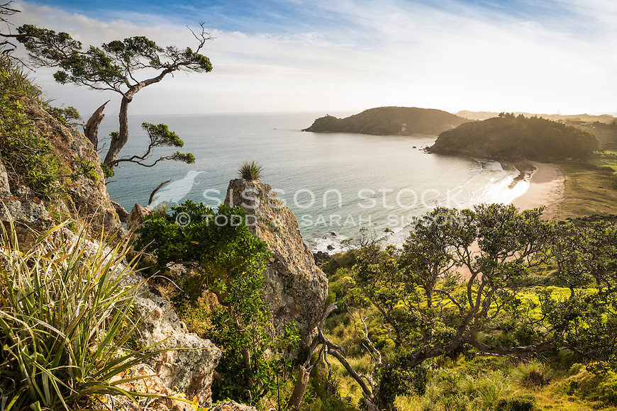 View over Pataua South, Northland, New Zealand - stock photo, canvas, fine art print