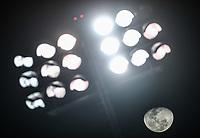 Luna se observa junto a las lamparas, luces, luminarias del Estadio Sonora , durante juego de beisbol de la Liga Mexicana del Pacifico temporada 2017 2018. Tercer juego de la serie de playoffs entre Mayos de Navojoa vs Naranjeros. 04Enero2018. (Foto: Luis Gutierrez /NortePhoto.com)