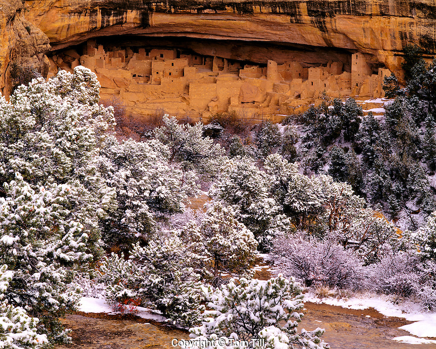 Cliff Palace in Winter, Mesa Verde National Park, Colorado   Largest Ancestral Puebloan cliff dwelling
