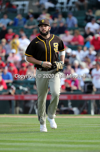 Hudson Potts - San Diego Padres 2020 spring training (Bill Mitchell)