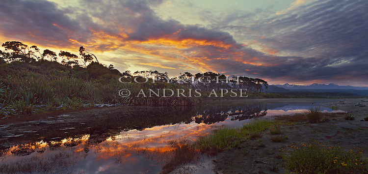 Sunrise reflected in lagoon. Westland National Park. New Zealand.
