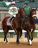 "October 07, 2018 : #11 Mister Banjoman and jockey Jareth Loveberry in the 1st running of The Indian Summer $200,000 ""Win and You're In Breeders' CupJuvenile Turf Sprint Division"" for trainer Mark Casse and owner John Oxley  at Keeneland Race Course on October 07, 2018 in Lexington, KY.  Candice Chavez/ESW/CSM"