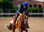 LOUISVILLE, KENTUCKY - MAY 01: By My Standards prepares for the Kentucky Oaks  at Churchill Downs in Louisville, Kentucky on May 01, 2019. Evers/Eclipse Sportswire/CSM