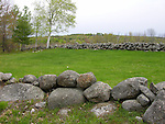 Stonewalls in Springtime New Hampshire