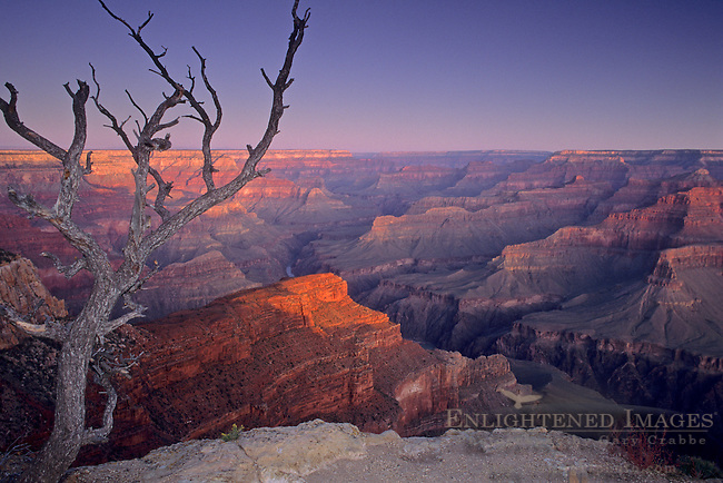 Sunrise light on the Grand Canyon from Pima Point, South Rim, Grand Canyon National Park, ARIZONA