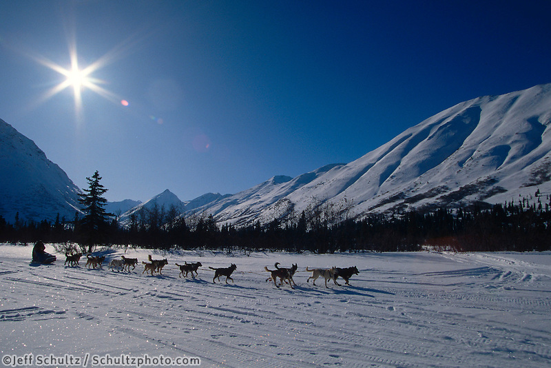 T Triumph Mushing in Pass Creek Rainy Pass 95 Alaska Iditarod