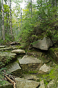 Rocky section along the Hancock Notch Trail in the White Mountains of New Hampshire during the summer months.