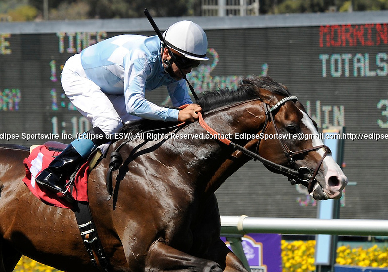 Courageous Cat (no. 1), ridden by Patrick Valenzuela and trained by William Mott, wins the 68th running of the grade 1 Shoemaker Mile Stakes for three year olds and upward on July 02, 2011 at Hollywood Park in Inglewood, California.  (Bob Mayberger/Eclipse Sportswire)