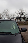 A dog awaits its owner in the parking lot of Mary Yoder's Amish Kitchen in Middlefield, Ohio.