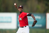 Kannapolis Intimidators relief pitcher Jose Brito (29) in action against the Hagerstown Suns at CMC-Northeast Stadium on August 16, 2015 in Kannapolis, North Carolina.  The Suns defeated the Intimidators 4-3 in game two of a double-header.  (Brian Westerholt/Four Seam Images)