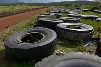 TANZANIA, Tarime Distrikt, Nyamongo, canadian Barrick Gold's subsidiary Acacia Gold Mine, old tyres of dumper, behind overburden disposal / TANSANIA, Abraumhalden der Acacia Gold Mine, verschlissene Reifen der grossen Dumper auf einer Muellhalde