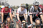 Andre Greipel (GER) Lotto-Soudal and Tom Dumoulin (NED) Sunweb in action during Stage 1 Emirates Motor Company Stage of the 2017 Abu Dhabi Tour, running 189km from Madinat Zayed through the desert and back to Madinat Zayed, Abu Dhabi. 23rd February 2017<br /> Picture: ANSA/Claudio Peri | Newsfile<br /> <br /> <br /> All photos usage must carry mandatory copyright credit (&copy; Newsfile | ANSA)