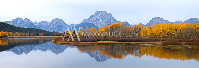 We just missed the peak of the autumn color in the Grand Tetons.