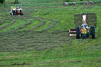 Farmers gather the final cut of hay from a field.