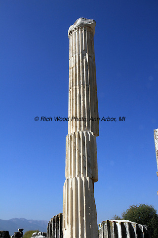 Reconstruction of a column broken into segements in Turkey