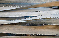 Close up of dried palm fronds