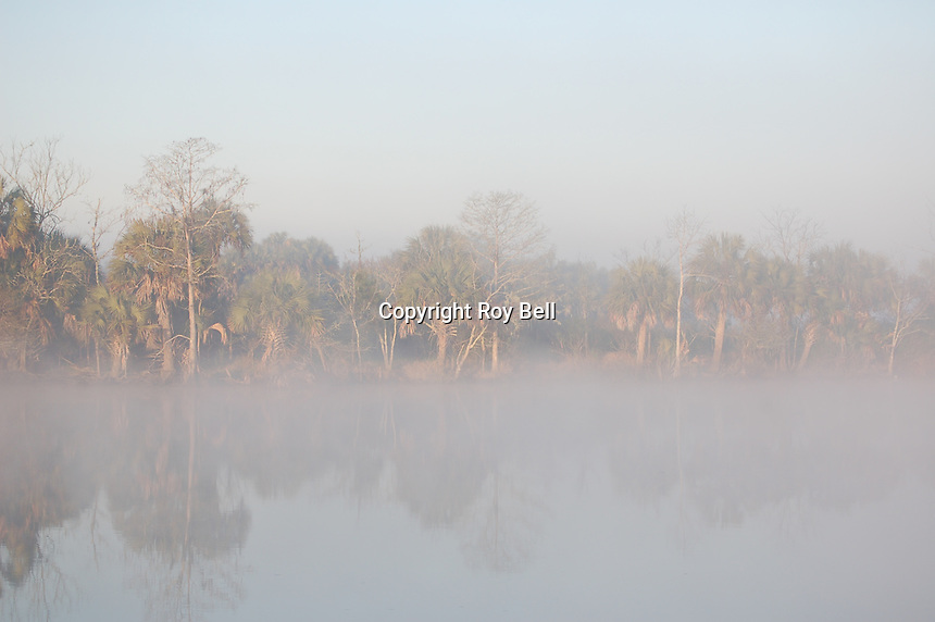 Foggy Morning on the Intercoastal Waterway near Appalatchicola Florida. March 2007