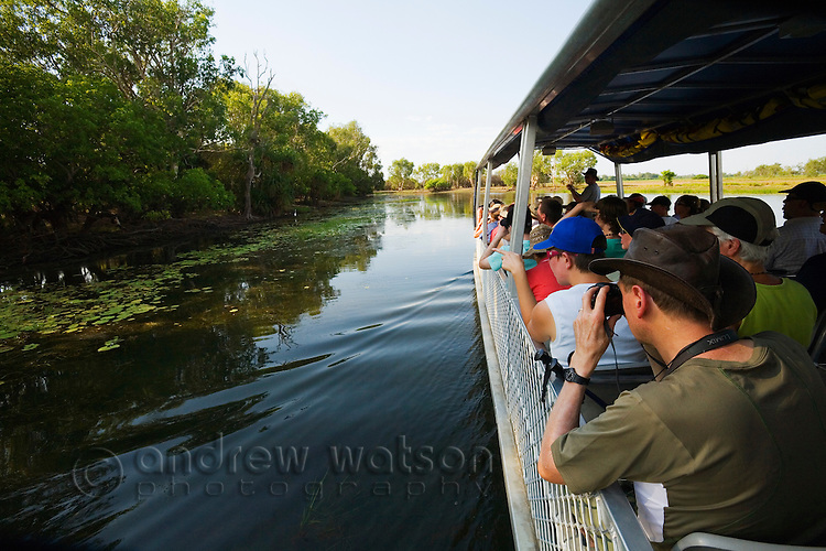 Spotting wildlife on a Yellow Water Wetlands cruise.  Cooinda, Kakadu National Park, Northern Territory, AUSTRALIA.