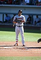 Anthony Santander - Salt River Rafters - 2017 Arizona Fall League (Bill Mitchell)
