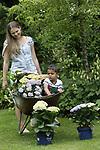 Foto: VidiPhoto<br /> <br /> HOUTEN - Marieke de Jong brengt donderdag samen met haar oppaskinderen in haar siertuin in Houten nog snel wat extra kleur aan met hortensia&rsquo;s. Als afsluiting van de Nationale Tuinweek start vrijdag het Open Tuinen Weekend. Meer dan duizend leden van tuinvereniging Groei &amp; Bloei stellen hun tuin gratis open voor publiek. In de meeste regio&rsquo;s is er zelfs een speciaal routeboekje van open tuinen beschikbaar. Mede door de fraaie weersvoorspellingen worden er tot en met zondag meer dan 100.000 tuinliefhebbers verwacht. Groei &amp; Bloei, de grootste tuinvereniging van Nederland, organiseert het populaire Open Tuinen Weekend voor de tiende keer op rij.
