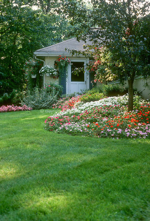 Home shade garden landscaping with impatiens used in mass groundcover, trees, house, lawn grass