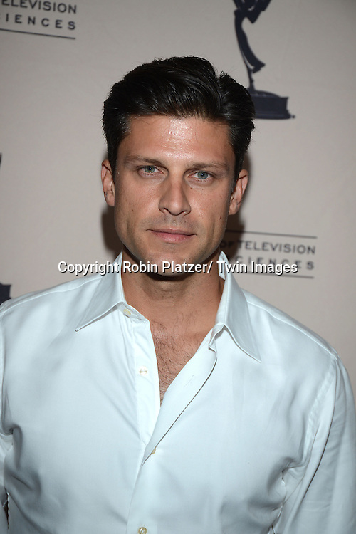Greg Vaughn attends the Academy Of Television Arts & Science Daytime Programming  Peer Group Celebration for the 40th Annual Daytime Emmy Awards Nominees party on June 13, 2013 at the Montage Beverly Hills in Beverly Hills, California.