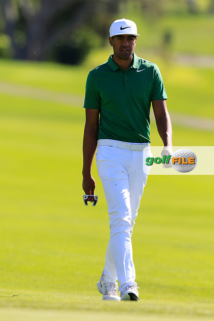 Tony Finau (USA) on the 13th green at Pebble Beach Golf Links during Sunday's Final Round 4 of the 2017 AT&amp;T Pebble Beach Pro-Am held over 3 courses, Pebble Beach, Spyglass Hill and Monterey Penninsula Country Club, Monterey, California, USA. 12th February 2017.<br /> Picture: Eoin Clarke | Golffile<br /> <br /> <br /> All photos usage must carry mandatory copyright credit (&copy; Golffile | Eoin Clarke)