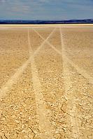 Alvord Desert with car tracks. Oregon