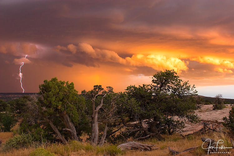 Lightning Strike at Sunset.  A lightning strike with sunset clouds on the Colorado Plateau near Moab, Utah, USA.