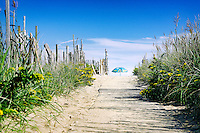 Lucy Vincent Beach, Chillmark, Martha's Vineyard, Massachusetts, USA