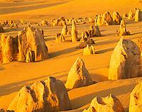 Sunset in the Pinnacles Desert, Limestone Pillars near Indian Ocean, Nambung National Park, Western Australia