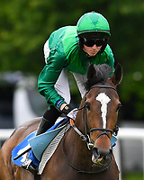 Assassinate ridden by Darragh Keenan goes down to the start of The Shadwell Stud Racing Excellence Apprentice Handicap during Afternoon Racing at Salisbury Racecourse on 12th June 2018