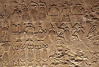 Afrique/Egypte/Edfou: Le temple d'Edfou consacré à Horus - Miel et abeilles