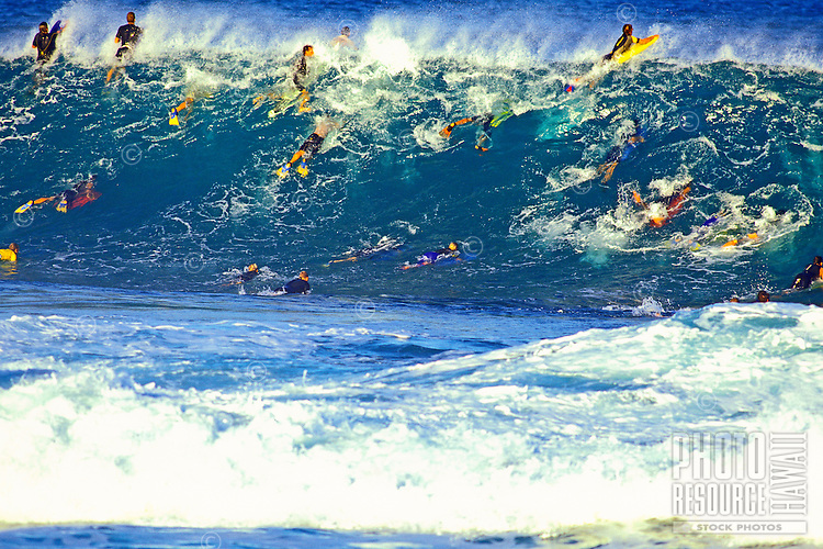 Body surfers and boarders crowd in on massive wave on the north shore of Oahu.