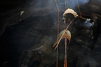 Harvest image. Them Mari hushes the bees away with the smoke from his makeshift smoker, and with the bamboo pole he removes the brood comb to access the honey.