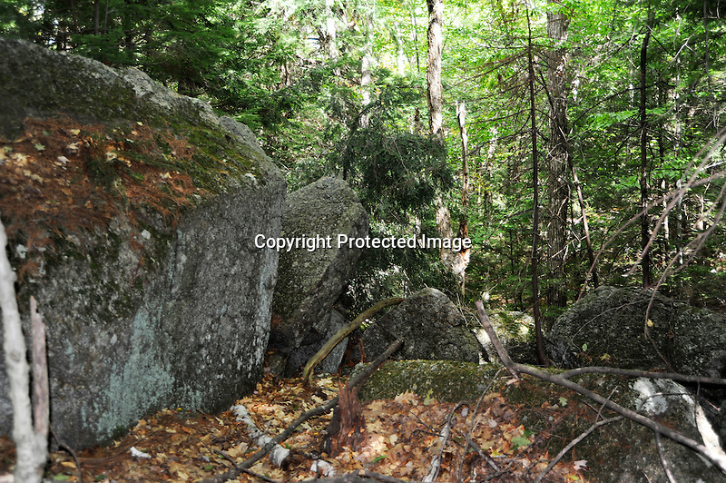Wooded Hiking Trail and Glacial Boulders in New Hampshire USA