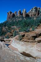 DESERT FLORA<br /> Sonoran Desert Scene<br /> Red rocks, pinyon and juniper - Sedona, AZ