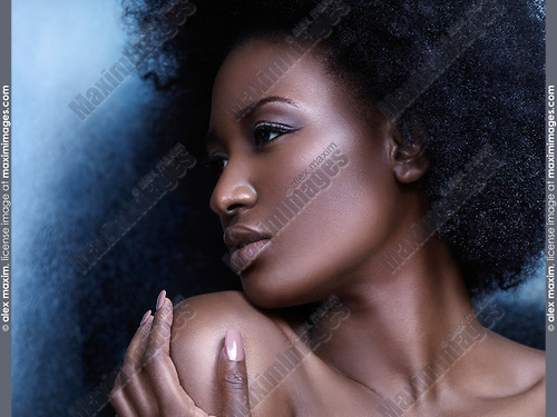 Beauty portrait of a young african american woman profile of face