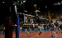 BOGOTÁ-COLOMBIA, 07-01-2020: Elina Rodríguez de Argentina, clava el balón, a Alexandra Muñoz y Maricarmen Guerrero de Perú, durante partido entre Argentina y Perú, en el Preolímpico Suramericano de Voleibol, clasificatorio a los Juegos Olímpicos Tokio 2020, jugado en el Coliseo del Salitre en la ciudad de Bogotá del 7 al 9 de enero de 2020. / Elina Rodríguez from Argentina, spikes the ball, to Alexandra Muñoz and Maricarmen Guerrero from Perú, during a match between Argentina and Peru, in the South American Volleyball Pre-Olympic Championship, qualifier for the Tokyo 2020 Olympic Games, played in the Colosseum El Salitre in Bogota city, from January 7 to 9, 2020. Photo: VizzorImage / Luis Ramírez / Staff.