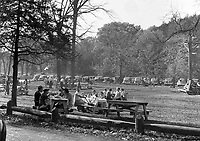 Picnickers and old cars  in White Pines Forest, Oregon, Illcirca 1930's.   (photo: www.bcpix.com)