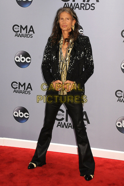05 November 2013 - Nashville, Tennessee - Steven Tyler. 47th CMA Awards, Country Music's Biggest Night, held at Bridgestone Arena. <br /> CAP/ADM/BP<br /> &copy;BP/ADM/Capital Pictures