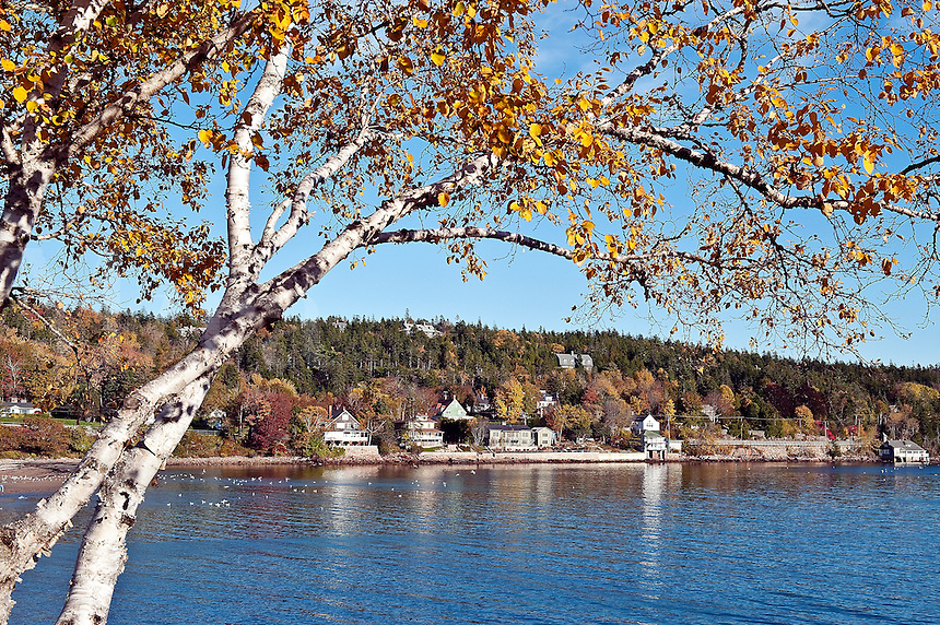 Autumn, Seal Harbor, Mount Desert Island, Maine, ME, USA