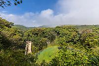 A waterfall in Haleakala National Park, Kipahulu district, Maui.