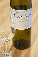 Triennes Viognier Sainte Fleur white and a glass Domaine de Triennes Nans-les-Pins Var Cote d'Azur France