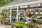 Farmstand in Sandwich, Cape Cod, MA