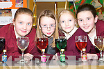 The Glass Band: Rowanna McNulty, Orla Greaney, Aoife Hartnett and Majella Lucey, 3rd class pupils of Scoil Naomh Brid in Duagh who hosted a scientific exhibition on Thursday last.   Copyright Kerry's Eye 2008