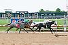 Avie winning at Delaware Park on 9/9/13